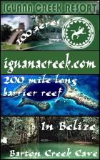 iguanacreek